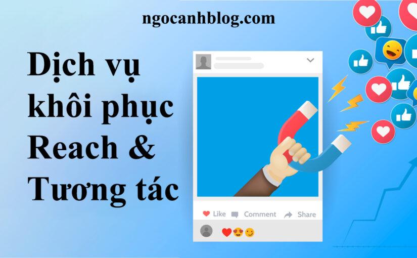 khoi phuc reach tuong tac