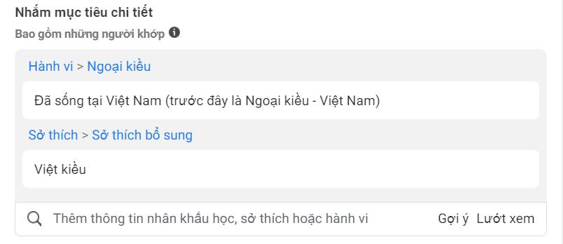 3 Cách target người Việt Nam ở nước ngoài